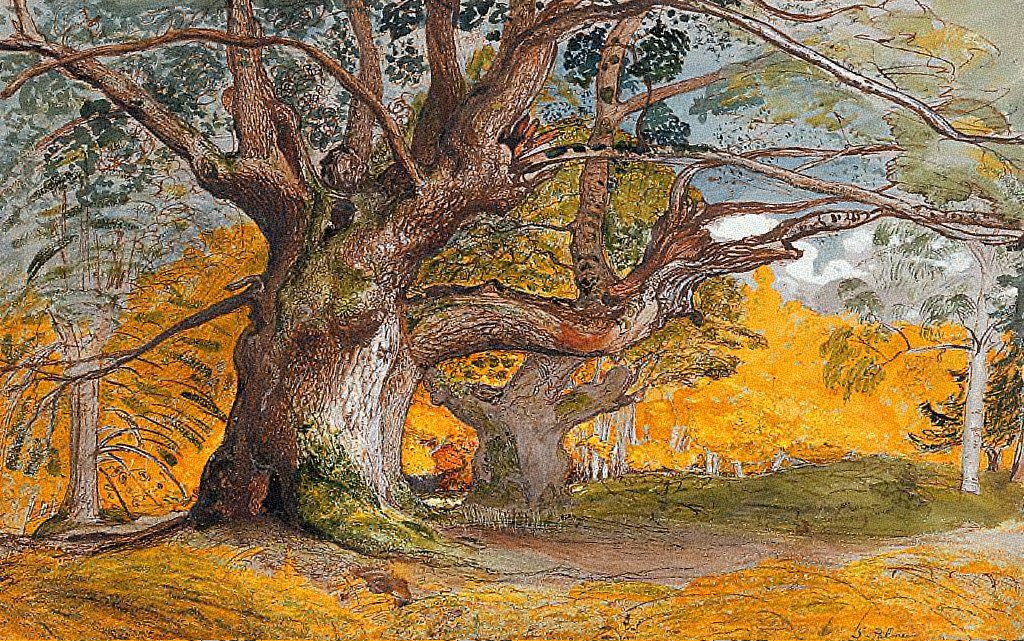 Samuel Palmer - Oak trees, Lulullingstone Park, 1828 - National Gallery - Ottawa.