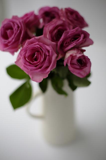 stillkuva ruususta
