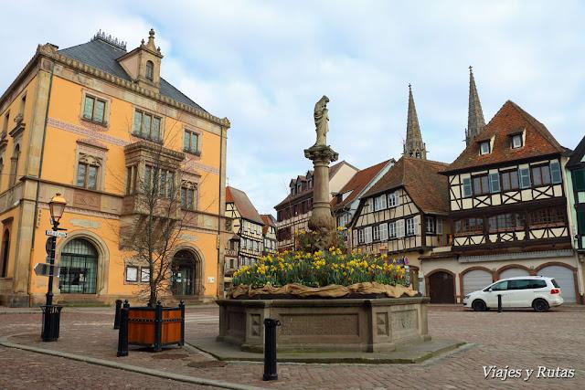Ayuntamiento de Obernai, Alsacia