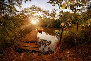 Речной причал, солнце, Август...