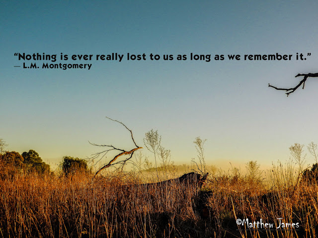 "'Nothing is ever really lost to us as long as we remember it"" - L.M. Montgomery"