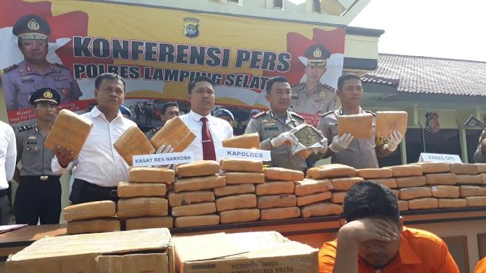 Polres Lamsel Gagalkan Penyelundupan Puluhan Kilo Narkotika Jenis Ganja.