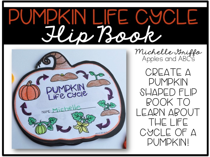 Life Cycle of a Pumpkin - Apples and ABC\u0027s