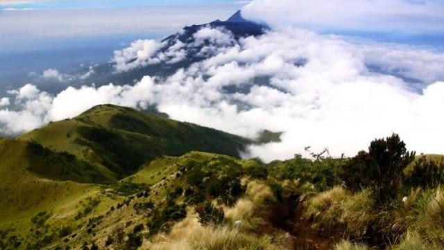Misteri Gunung Lawu: Hilangnya Jasad Raja Majapahit Sampai Burung Petunjuk Jalan