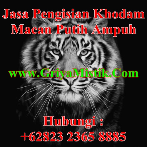Jasa Pengisian Khodam Macan Putih Ampuh