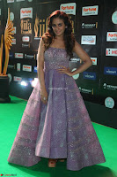 Parul Yadav in Stunning Purple Sleeveless Transparent Gown at IIFA Utsavam Awards 2017  Day 2  Exclusive 11.JPG
