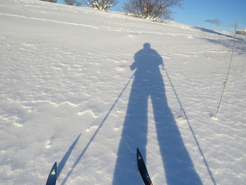 shadow of skier
