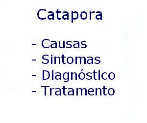 Catapora causas sintomas diagnóstico tratamento prevenção riscos complicações