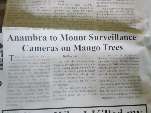 Anambra To Mount CCTV On Mango Trees