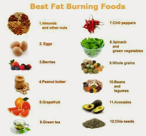 diet to shred fat quickly