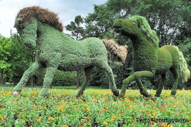 Giant Sculptures