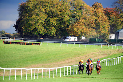 Irish Racecourses: Thurles
