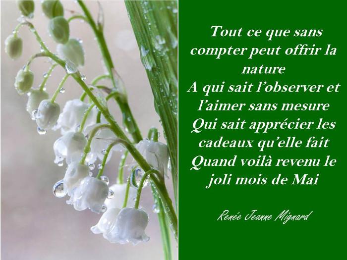 Pourquoi offre t on du muguet au 1er mai bettinael passion couture made in france - Poeme coccinelle porte bonheur ...