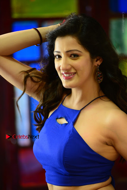 Actress Richa Panai Latest Stills in Rakshaka Bhatudu Telugu Movie  0003.JPG