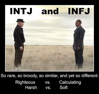 The World We Create: INTJ and INFJ Pros and Cons in