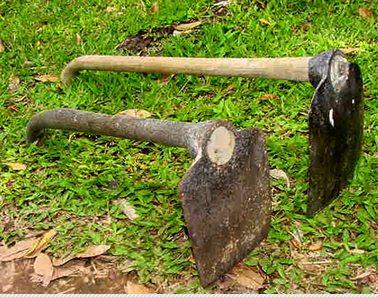 Alat Pertanian Tradisional Yang Masih Digunakan Di Indonesia Tips