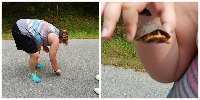 saving baby turtles is Sarah Eli's job -@CarmaPoodale