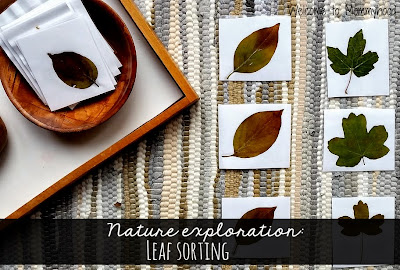 Fall Activities for Toddlers by Welcome to Mommyhood #toddleractivities #fallactivities