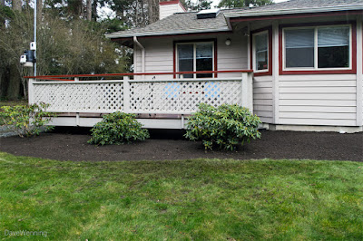Landscaping (Day 1)