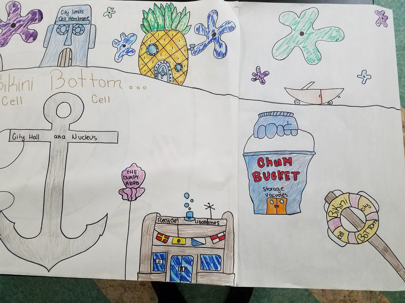 Science Time At Visitation Academy Cell Cities With The