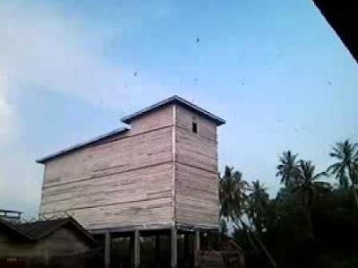 Membuat Rumah Walet Murah