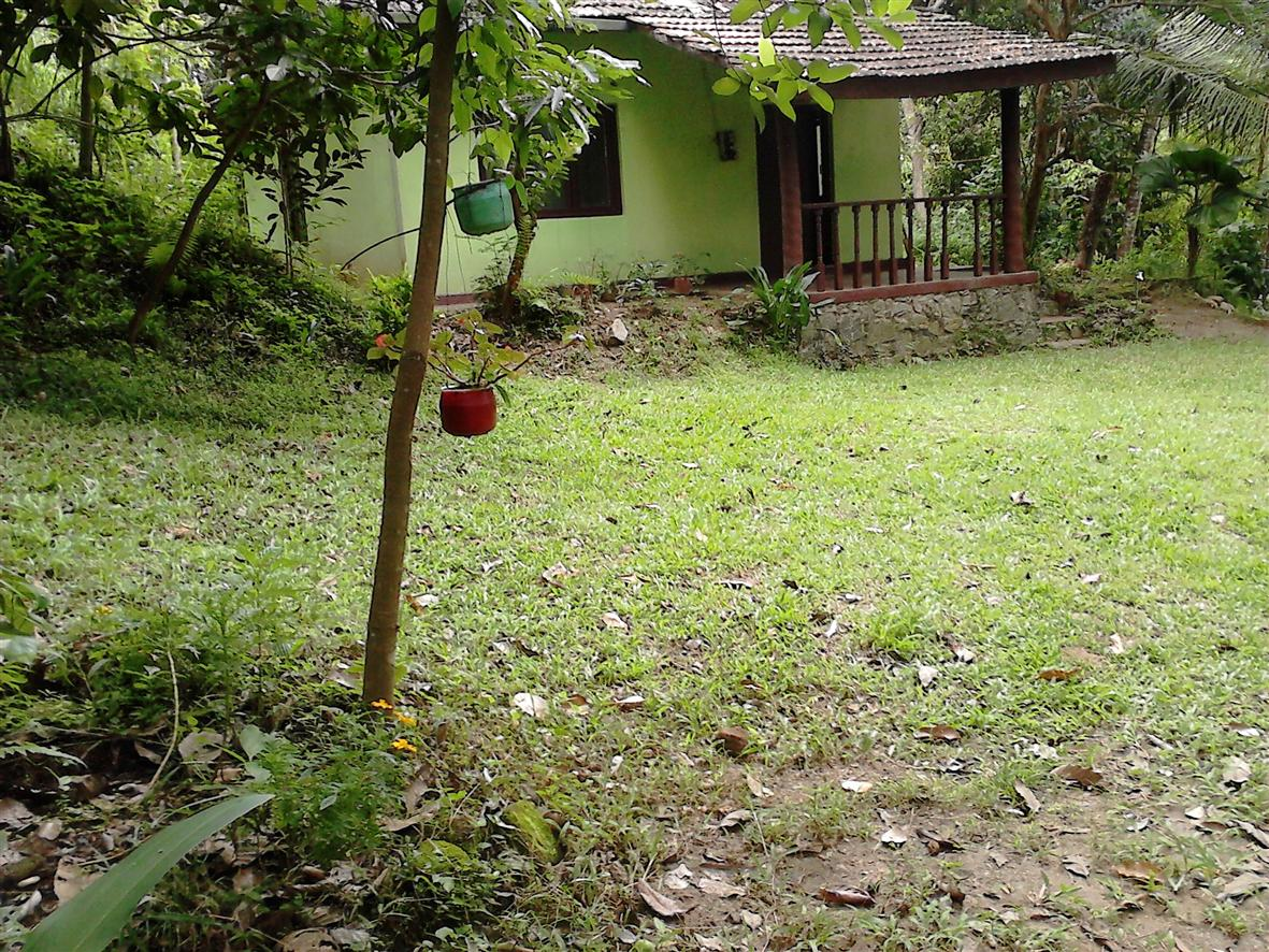 Land Font yard - Kandy Land for sale