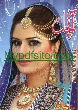 Aanchal Digest January 2014