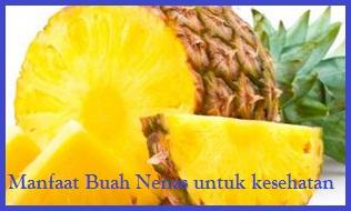 Selain rasanya yang lezat elok dan sedikit asam ternyata buah Nanas juga sangat Manfaat Nanas Untuk Kesehatan Tubuh