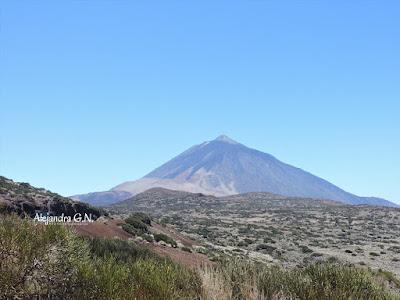 Cono volcánico del teide con matorrales en primer plano