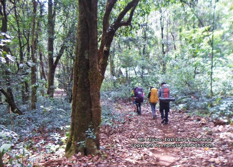 Pendakian Gunung Arjuno Via Purwosari Menembus Jalur Spiritual Manusia Lembah