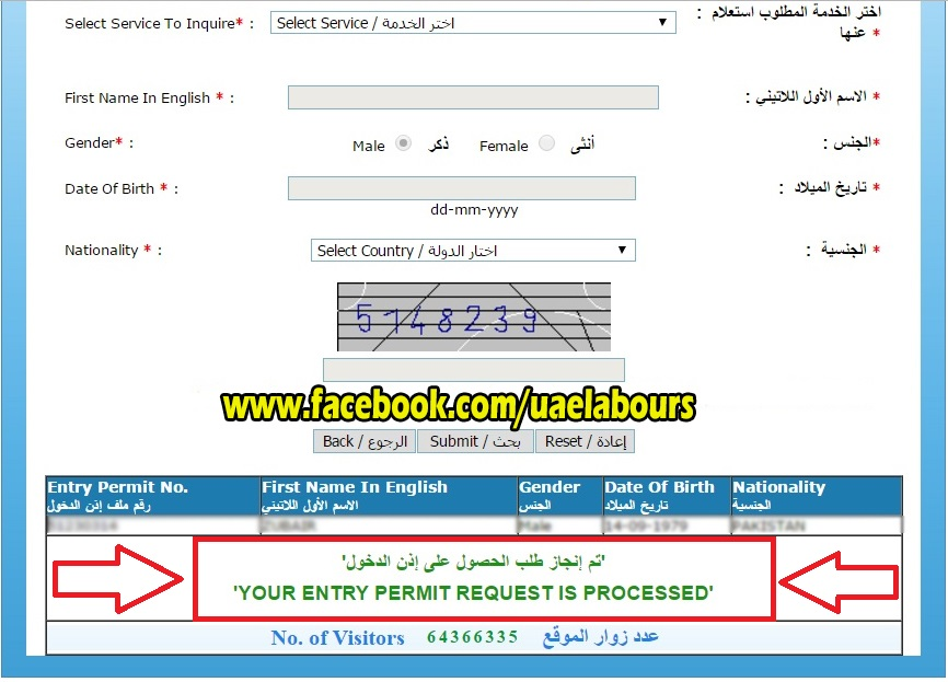UAE Visit visa status