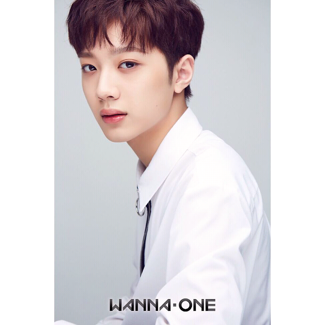 Lai Guanl Lin Wanna One Biodata