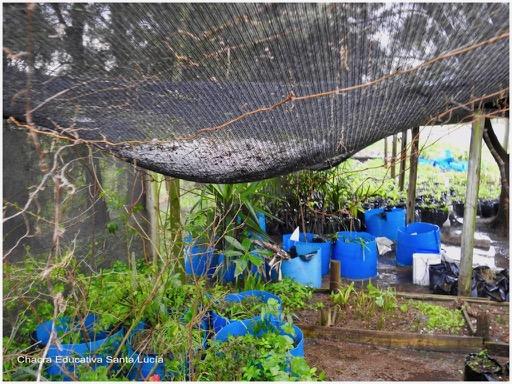 Granizo acumulado sobre la malla sombra - Chacra Educativa Santa Lucía