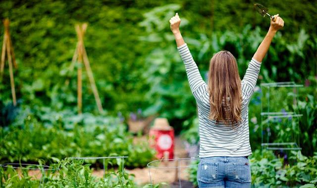 Yogic Gardening