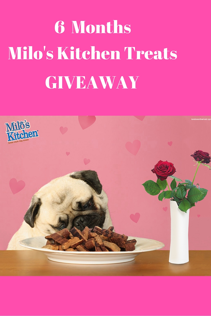 Mommy Blog Expert Isaiah Mustafa Spice Boys Videos: MOMMY BLOG EXPERT: Milo's Kitchen Valentine Giveaway Share