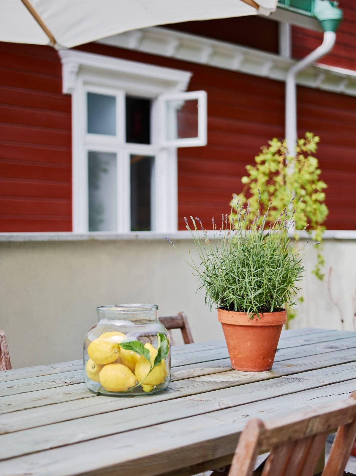 Dreamiest Scandinavian House Design Exterior Ideas 6: Interiors : Scandinavian Style House