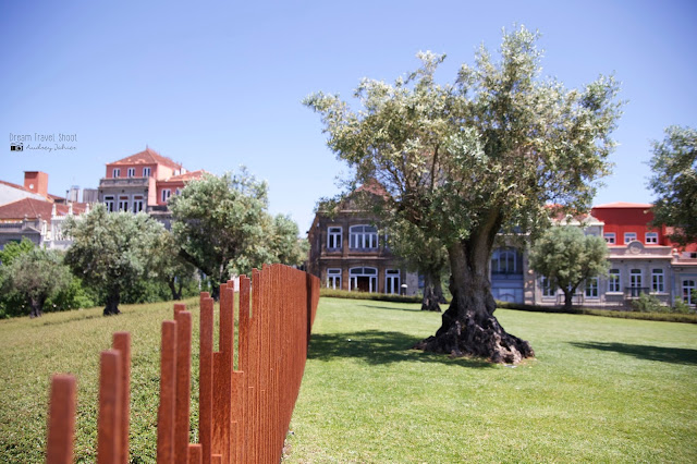 portugal, porto, praca de lisboa, jardin, parc, torre dos clerigos, lello et irmao