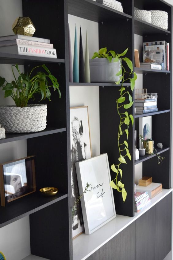 adding plants to shelves