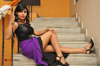 Telugu Actress Rachana Smith Stills at Money is Honey Audio Release  0114.jpg
