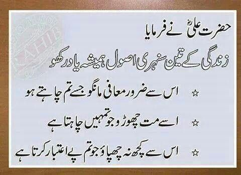saying qol of hazrat ali
