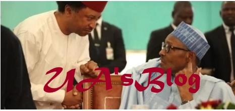 Buhari unable to control forces drawing Nigeria back - APC Senator