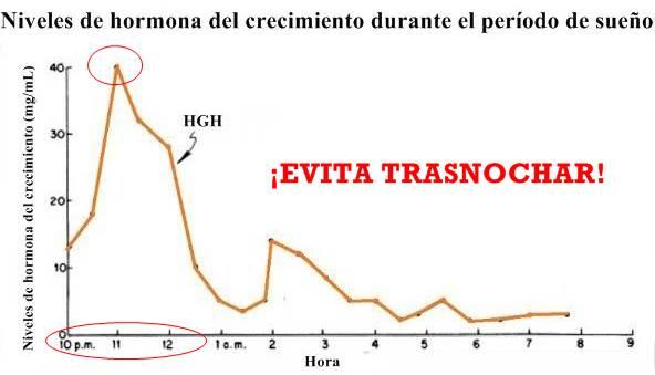 Los horarios de secreción máxima de hormona del crecimiento