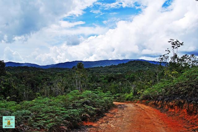 Camino hacia Pa Lungan (Kelabit Highlands), Borneo (Malasia)