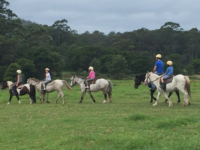 horseback riding in the country