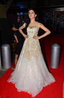 Rukshar Mir designer Anarkali Gown at 64th Jio Filmfare Awards South  2017 ~  Exclusive 045.JPG