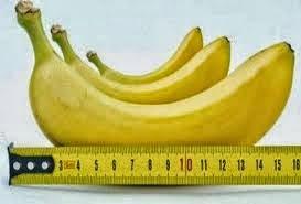 Makanan Yang Bisa Membesarkan Penis