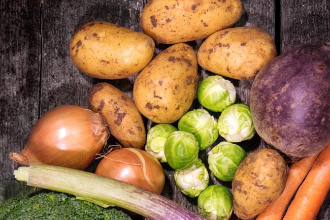 Czy pies powinien jeść ziemniaki?