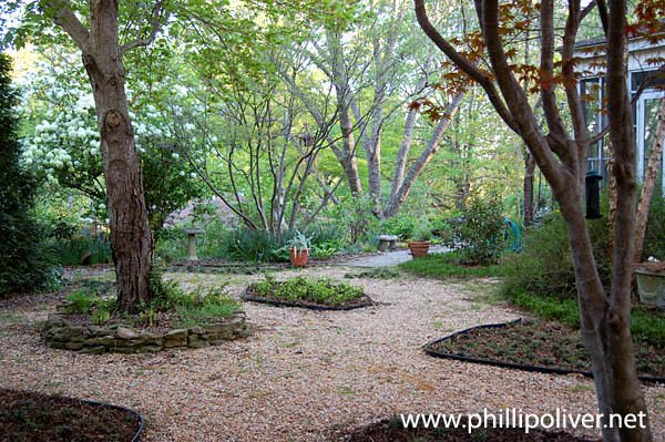 Sustainable Living project - The no-mow lawn on No Mow Backyard Ideas id=18253