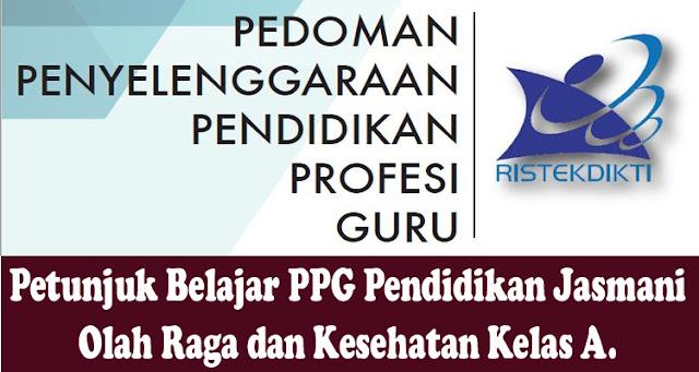 https://www.gurusmp.co.id/2019/03/petunjuk-belajar-ppg-pendidikan-jasmani.html