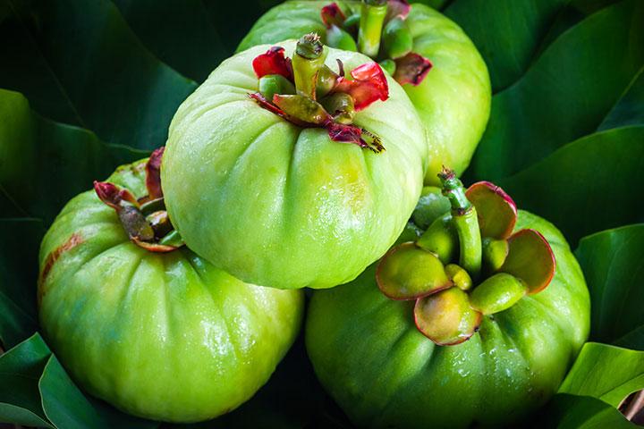 Garcinia Cambogia Benefits